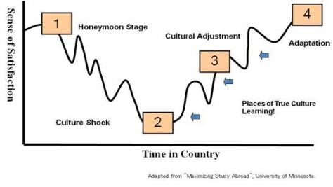 The Process of Culture Shock and Cultural Adjustment