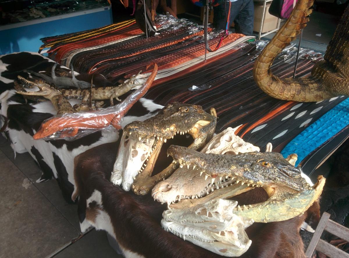 Chatuchak Market - Bangkok