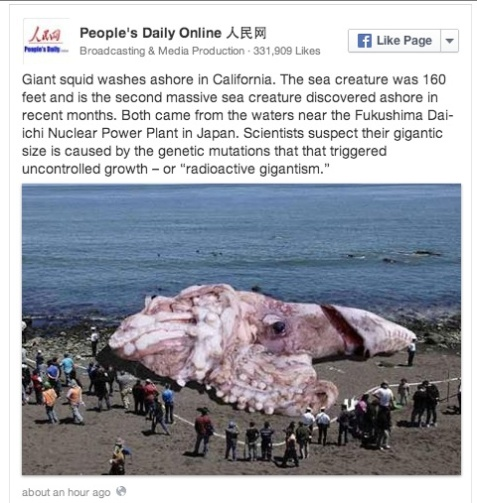 16-peoples-daily-giant-squid
