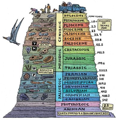 Geological eras and ages.